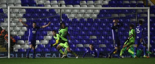 Reading's John Swift turns to celebrate scoring the opening goal against Birmingham City