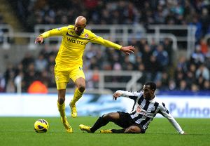 Barclays Premier League - Newcastle United v Reading - St. James' Park