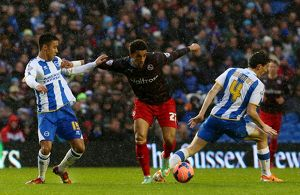 FA Cup - Third Round - Brighton and Hove Albion v Reading - AMEX Stadium