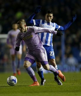 Sky Bet Championship - Brighton and Hove Albion v Reading - AMEX Stadium